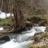 雪解けの渓流