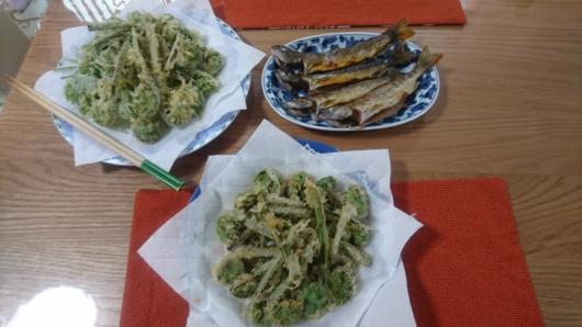 渓魚の塩焼きと山菜コゴミの天ぷら
