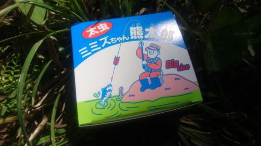 ミミズちゃん熊太郎(太虫)