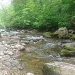 米代川水系阿仁川支流